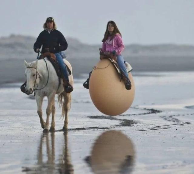 мужчина на коне и девушка на яйце