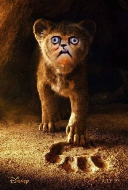 """постер к фильму """"король лев"""""""