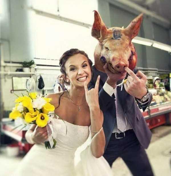 невеста и жених с головой свиньи