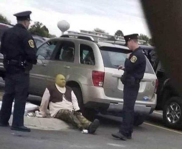 шрек и полицейские