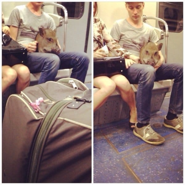 парень со свиной головой в метро
