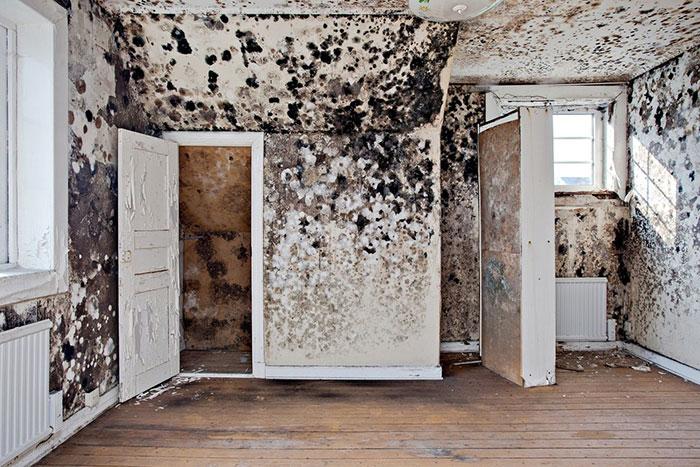 страшные стены в комнате
