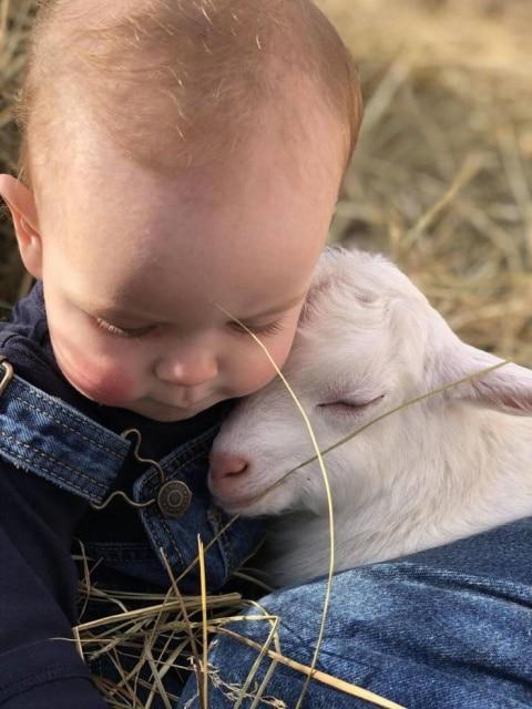 ребенок и козленок