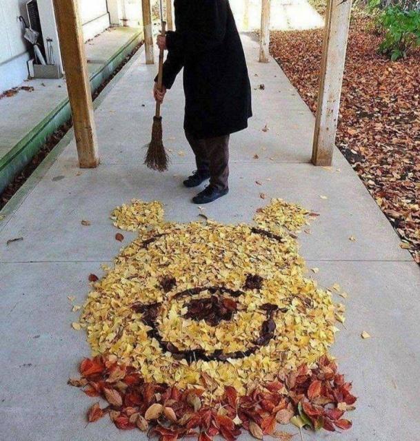 дворник сделал картину из листьев