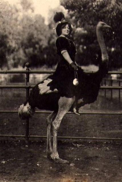 женщина на страусе