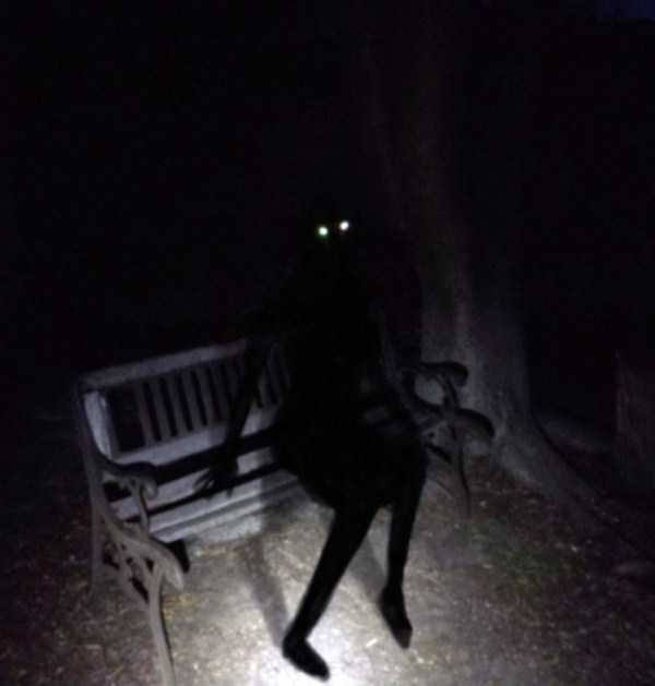 силуэт девушки в черном на скамейке