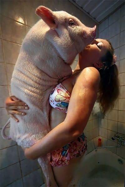 женщина со свиньей