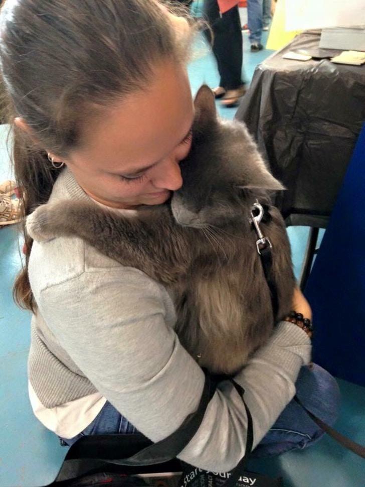 девушка обнимает кота