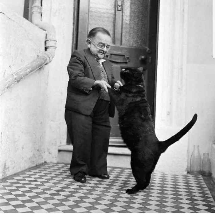 мужчина карлик и черный кот