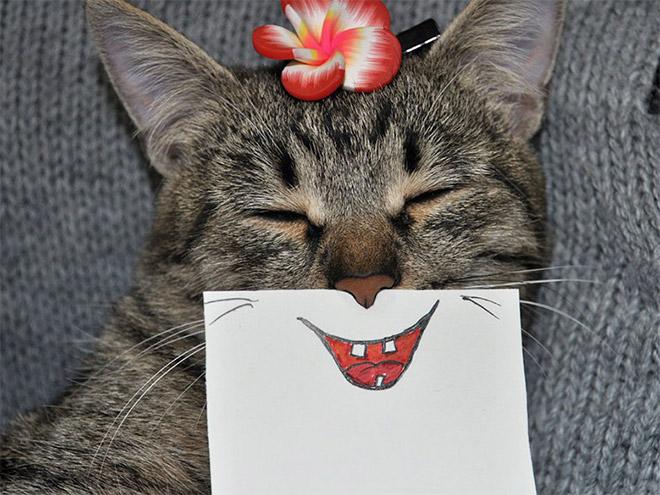 полосатая кошка с нарисованной улыбкой