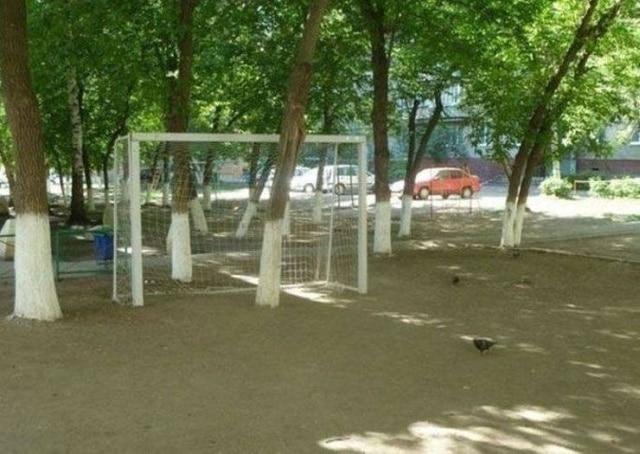 футбольные ворота и дерево