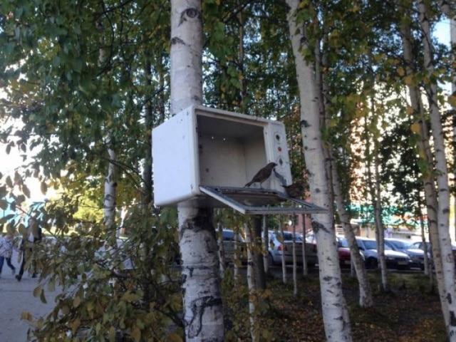 микроволновка на дереве