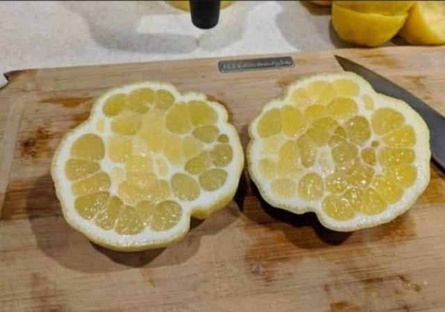 необычный лимон