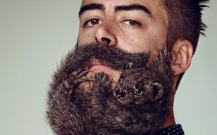 необычная борода