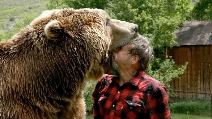 медведь и мужчина