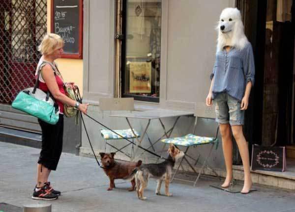 манекен в маске собаки