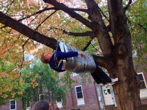парень примотан к ветке на дереве