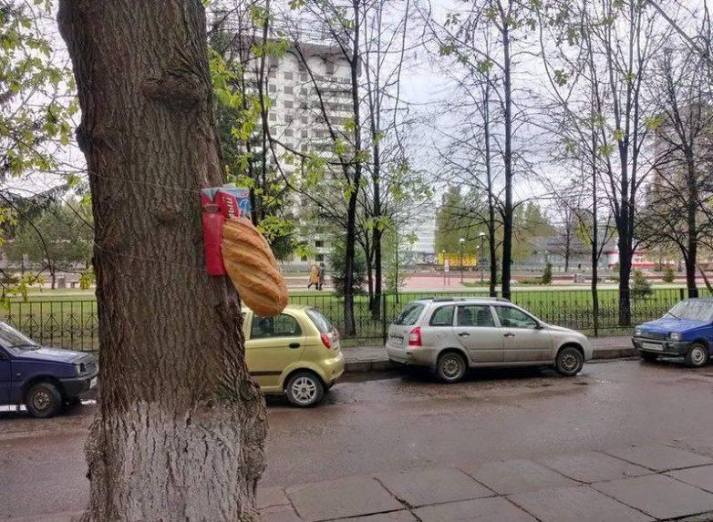 батон на дереве