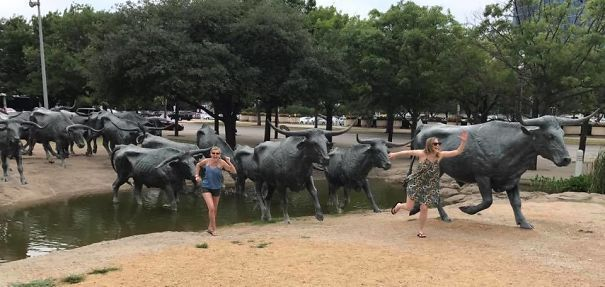 памятник бегущим быкам