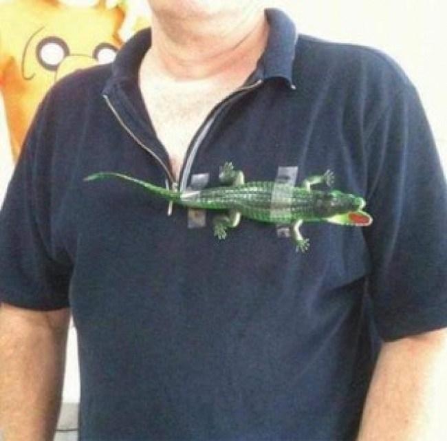 мужчина с игрушечным крокодилом на груди