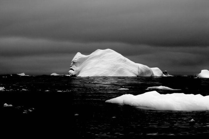 льдины в океане