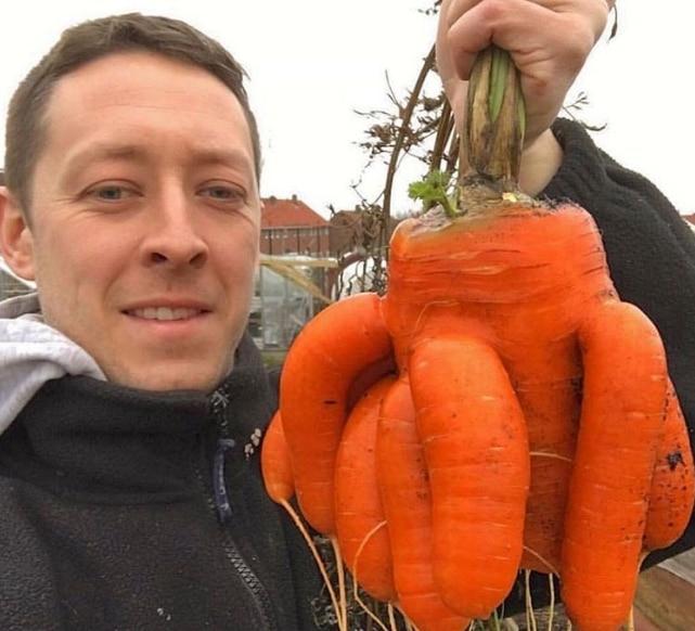 мужчина с морковкой в руках