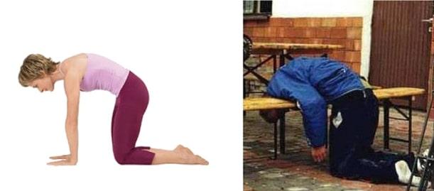 поза кошки в йоге