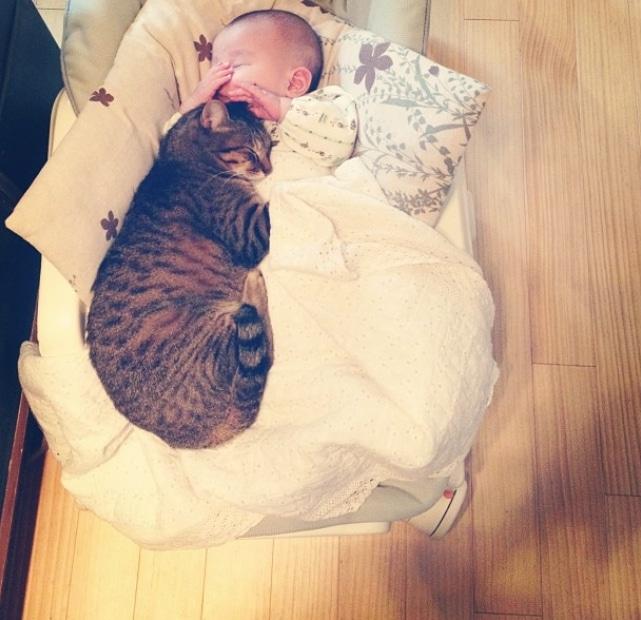 кот спит рядом с ребенком