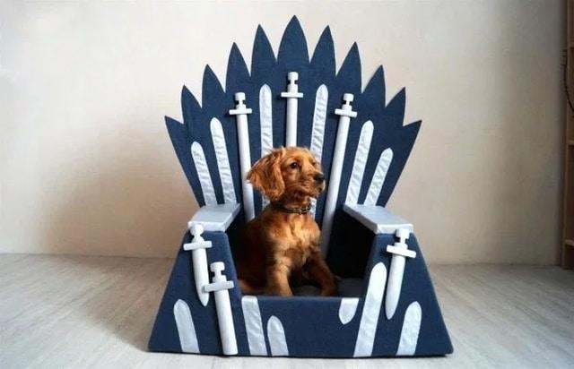 трон для собаки