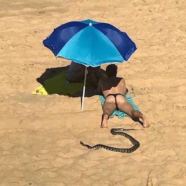 парень на пляже и змея