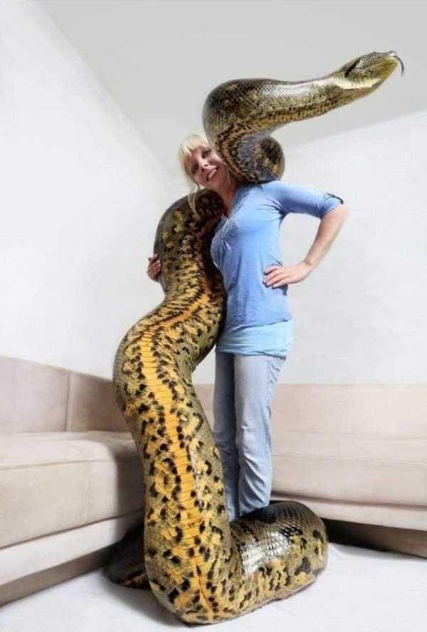 девушка с огромной змеей