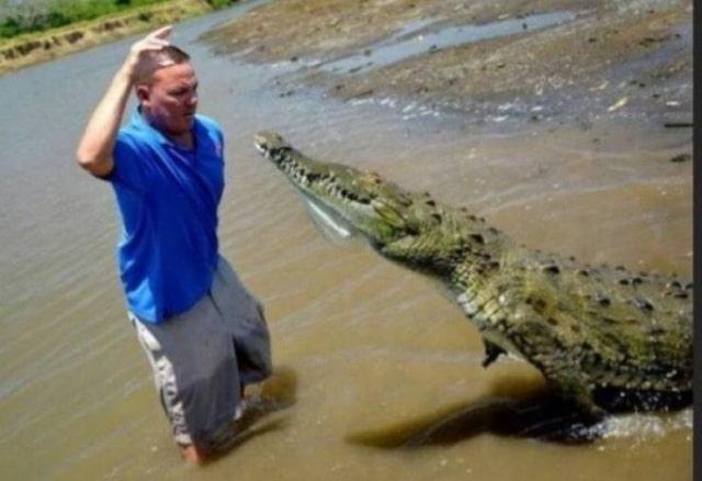 мужчина и крокодил