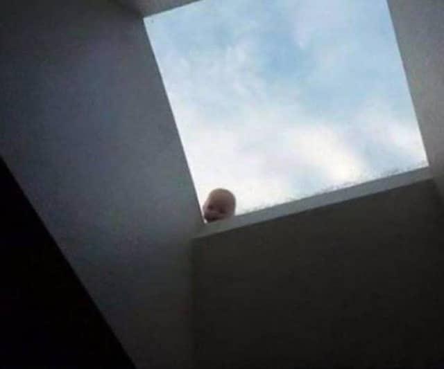 кукла на крыше