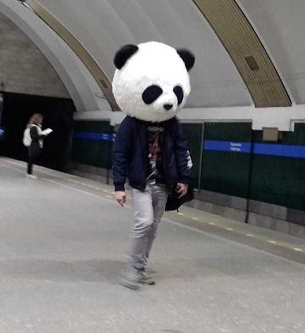 мужчина с головой панды