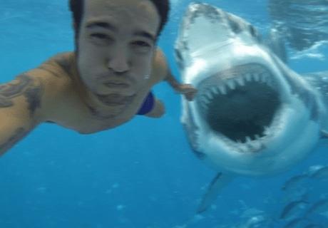селфи парня с акулой