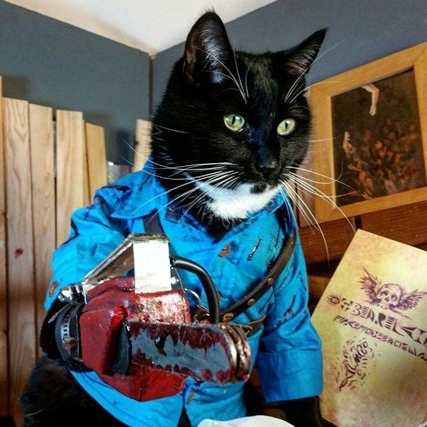 черный кот с бензопилой