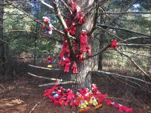 дерево в куклах элмо