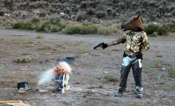 парень с пистолетом в маске лошади