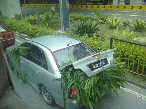 Тем временем в Азии (14 фото)