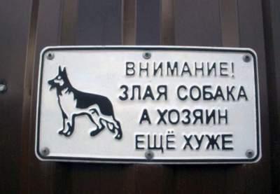Свежая подборка смешных табличек, предостерегающих от злых собак Приколы,смешное,собаки