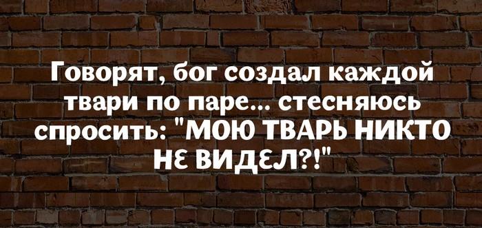 1476044048_image00001-1