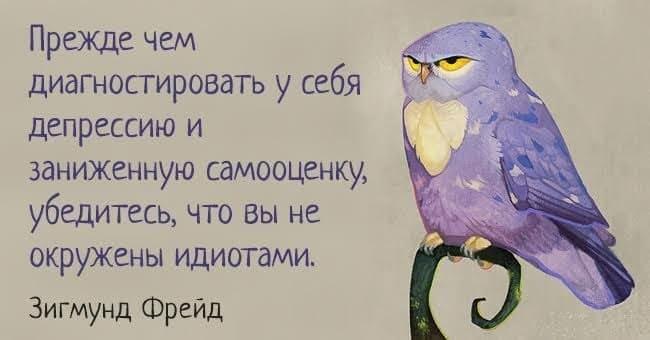 7 мудрейших открыток