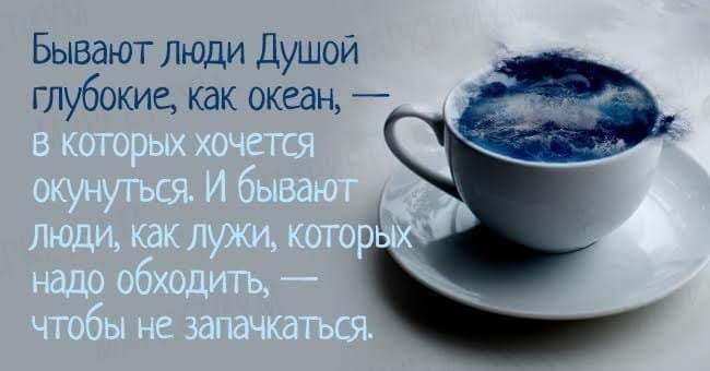 1477047603_image00001-1