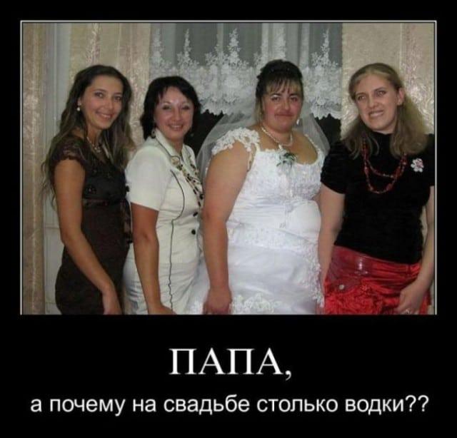 Вы будете смеяться: убойные смешные картинки!