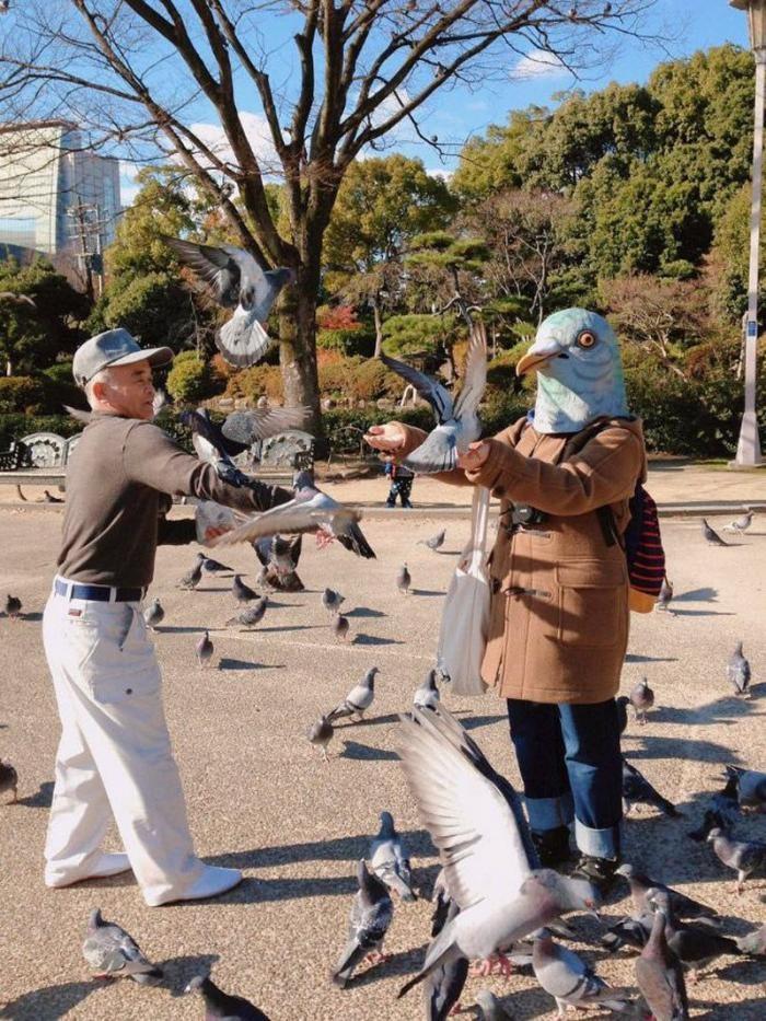 1559240556_chudaki-v-maske-golubja-10.jpg