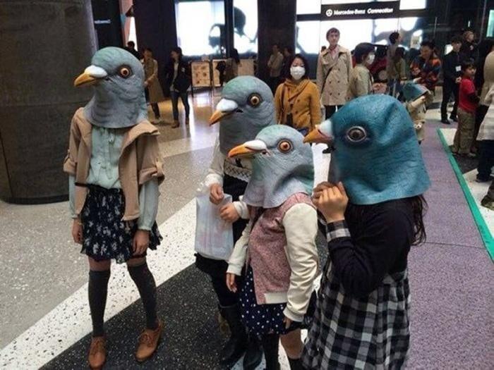1559240594_chudaki-v-maske-golubja-21.jpg