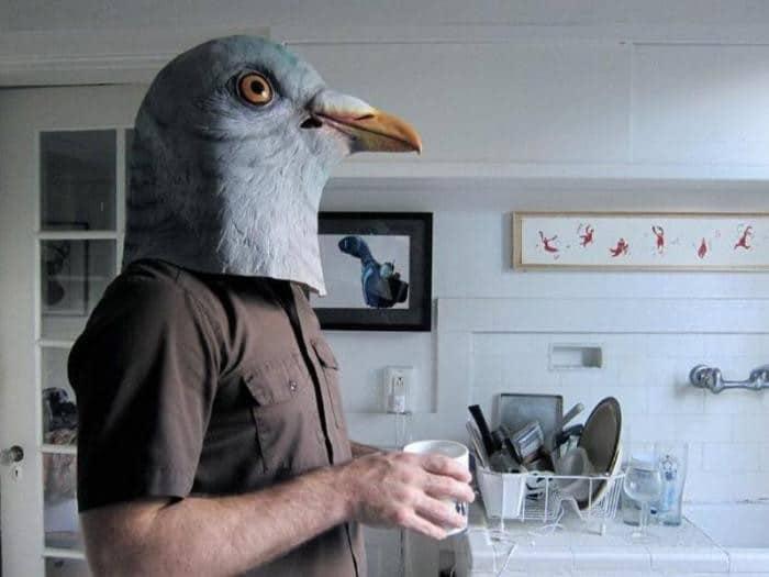 1559240609_chudaki-v-maske-golubja-9.jpg
