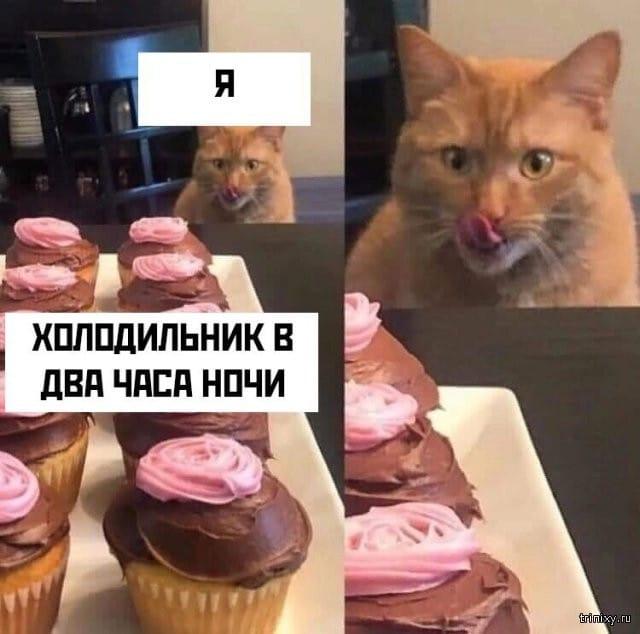 1561186696_podborka-prikolnyh-foto-54.jpg