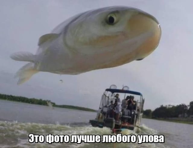 Подборка прикольных фото №2149 (60 фото)