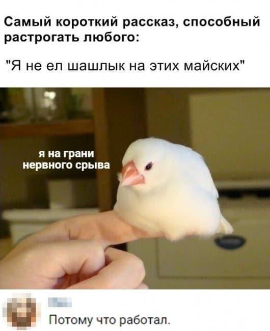 auto_01-591559494629_mixmovie_ru_2019052646_00060.jpg